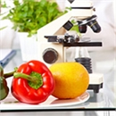 GBA Food Industry Solutions